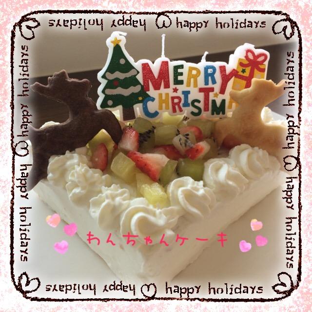わんちゃんと一緒にクリスマス☆ランチ♪♪ ~無事終了&楽しい時間をありがとぉございました♪♪~