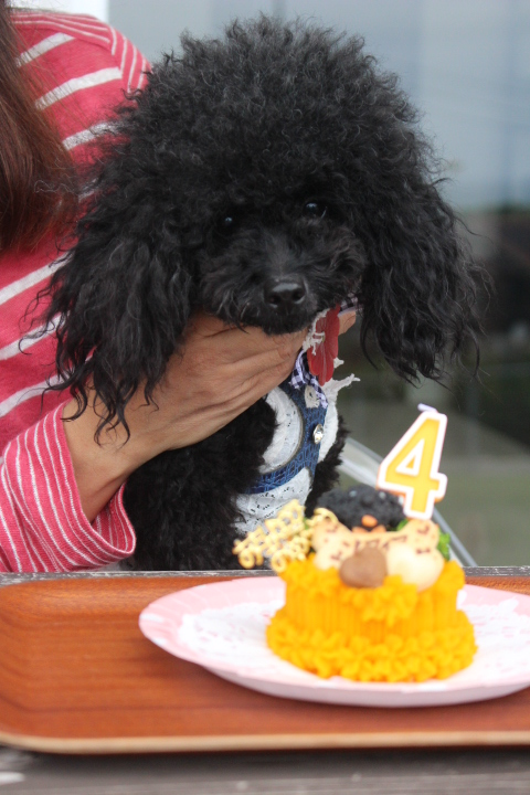 ソフィアちゃんとお誕生日ケーキ
