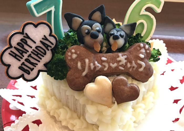 Happy Birthday♪♪ りゅう君&きゅうちゃん☆