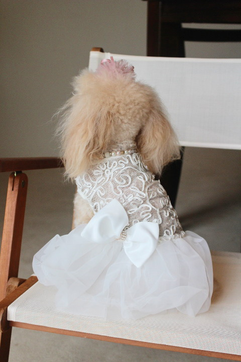 白ドレス③_1