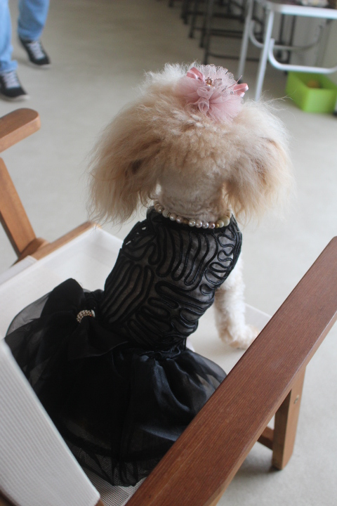黒ドレス③