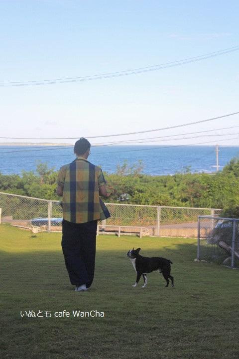 パパさんとお散歩① - コピー