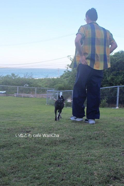 パパさんとお散歩② - コピー