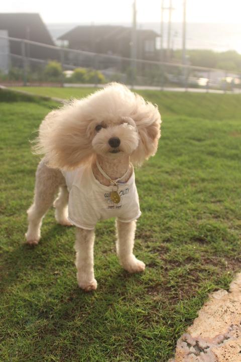 おはようございます!!風強い~っ!!